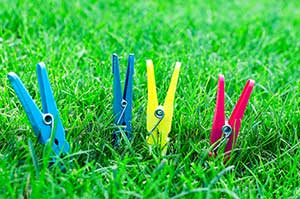 pegs on lawn